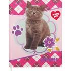 Дневник для 1-11 классов Pretty Pets, твёрдая обложка, шёлк, тиснение фольгой