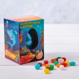 Подарочный набор «Акула»: растущая игрушка, конфеты 20 г
