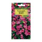"""Семена цветов Колокольчик """"Розеа"""", средний, Дв, 0,1 г"""