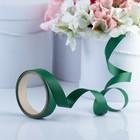 """Лента для декора и подарков """"Аспидистр"""", зеленый, тиснение, 2 см х 10 м"""
