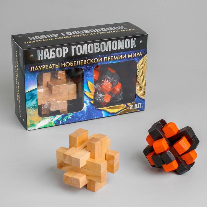 Набор деревянных головоломок «Лауреаты Нобелевской премии мира» 2 шт