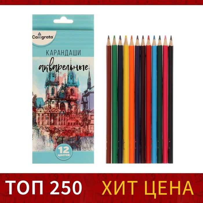 Карандаши Calligrata, 12 цветов, в картонной коробке, заточенные, «Акварельные»