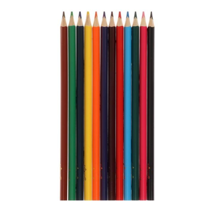 Карандаши Calligrata, 12 цветов, в картонной коробке, заточенные, «Акварельные» - фото 448839118