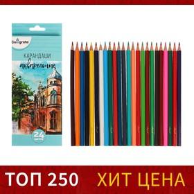 Карандаши 24 цвета, в картонной коробке, заточенные, «Акварельные»