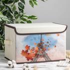 Короб для хранения с крышкой «Осенний Париж», 39×25×25 см - фото 308331722