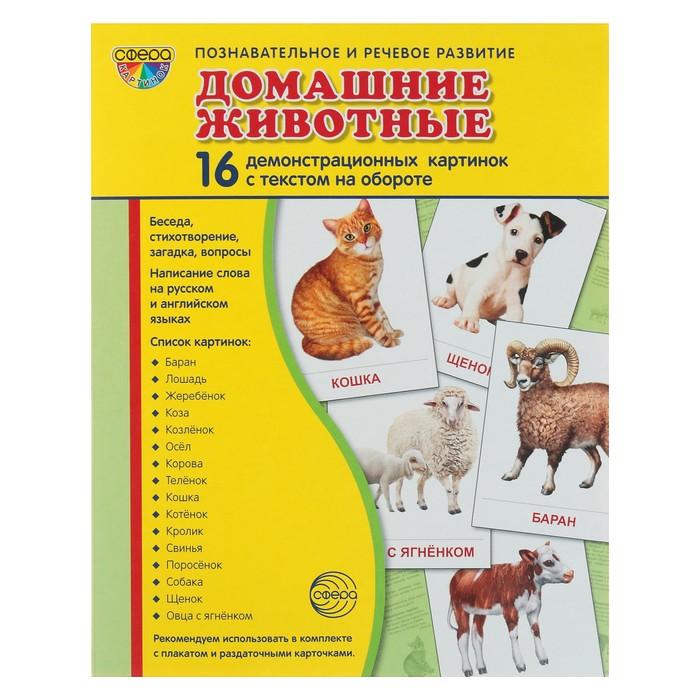 """Набор демонстрационных плакатов """"Домашние животные"""" 173х220 мм"""
