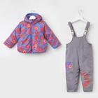 Комплект для девочки, цвет фиолетовый, рост 98-104 см (M)