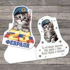 Открытка поздравительная «C 23 Февраля!», котёнок в берете, 7 × 9 см