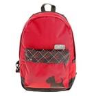 Рюкзак молодежный Luris Эра 38x28x19 см для девочки, эргономичная спинка «Терьер»