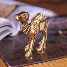 Сувенир «Верблюд»