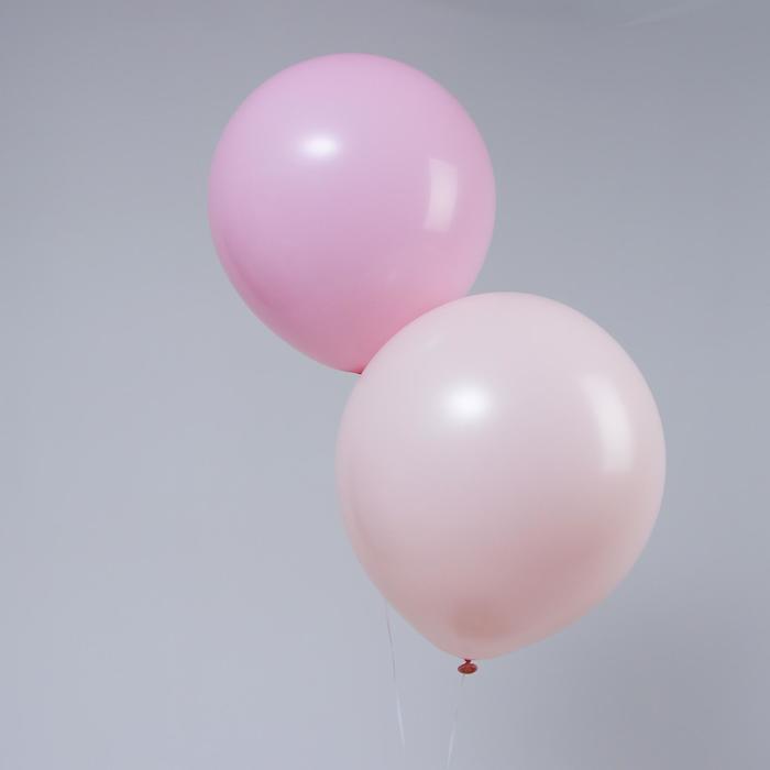 """Шар латексный 18"""" «Макарун», набор 2 шт., цвет шампань и пыльная роза - фото 308469787"""