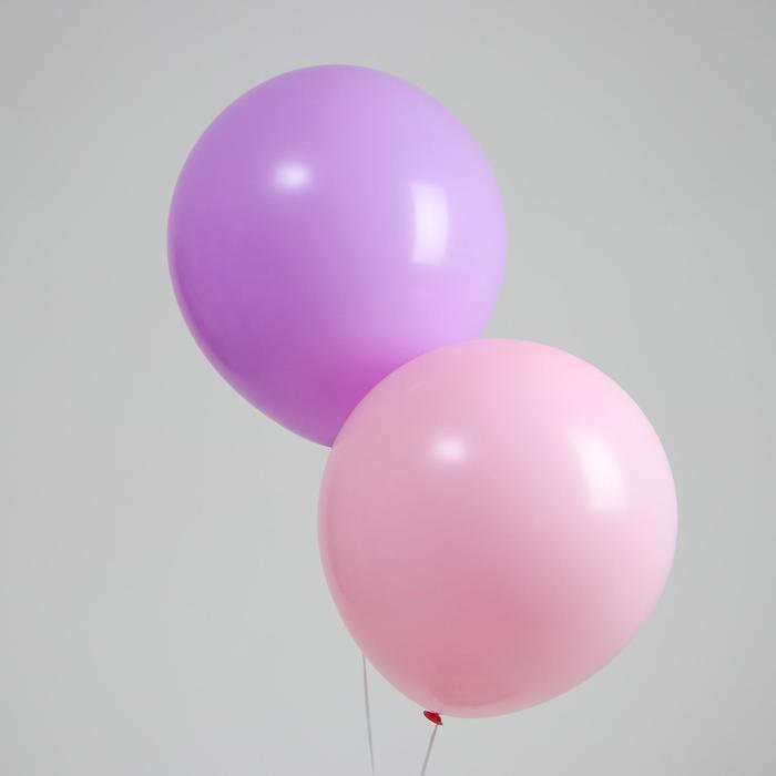"""Шар латексный 18"""" «Макарун», набор 2 шт., цвет розовый и фиолетовый - фото 308469789"""