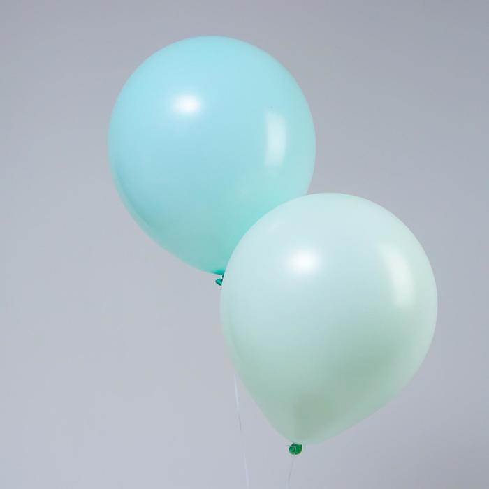 """Шар латексный 18"""" «Макарун», набор 2 шт., цвет бирюзовый и зелёный - фото 308469791"""