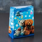 The laminated package 12 x 15 x 5 cm