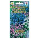 Семена цветов Незабудка альпийская «Виктория», Дв, 0,05 г.