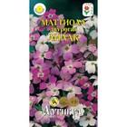 Семена цветов Маттиола двурогая «Лилак», О, 0,5 г.