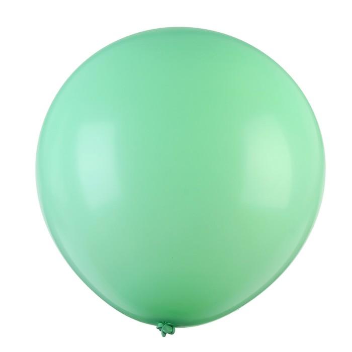 "Шар латексный 32"" «Макарун», 1 шт., цвет зелёный - фото 952678"