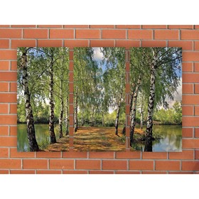 Модульная картина на экокоже 'Березовая аллея' 3шт.-25х50 см, 79*50 см Ош