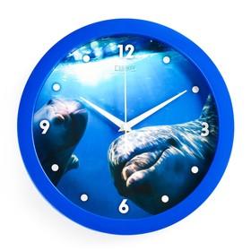 """Часы настенные, серия: Животный мир, """"Дельфин"""", плавный ход, d=28 см"""