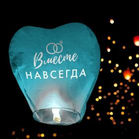 Фонарик желаний «Вместе навсегда», сердце, цвета МИКС в Донецке