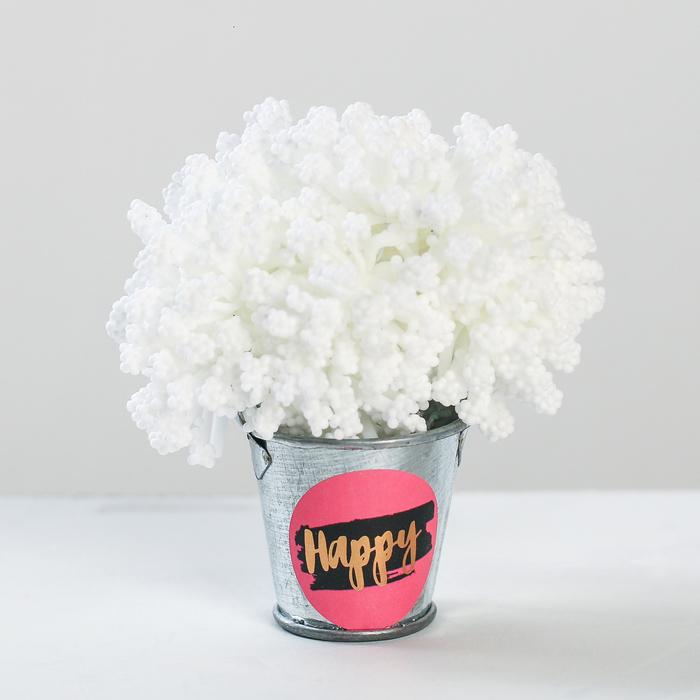 Цветочный комплимент «Счастье», 5 × 7 × 5 см