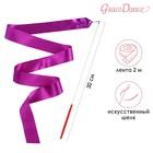 Лента гимнастическая 2 м с палочкой, цвет фиолетовый