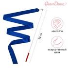Лента гимнастическая 2 м с палочкой, цвет синий
