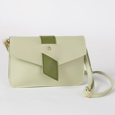 Bag, 2 Department magnet, adjustable strap, color mint/green