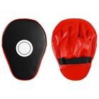 Paw Boxing 25х19х5 cm