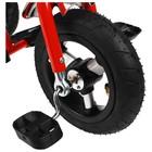 """Велосипед трёхколёсный Micio Classic Air, надувные колёса 10""""/8"""", цвет красный - фото 105546803"""