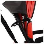 """Велосипед трёхколёсный Micio Classic Air, надувные колёса 10""""/8"""", цвет красный - фото 105546806"""