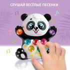 Музыкальная игрушка «Лучший друг: Панда», световые и звуковые эффекты - фото 106984207