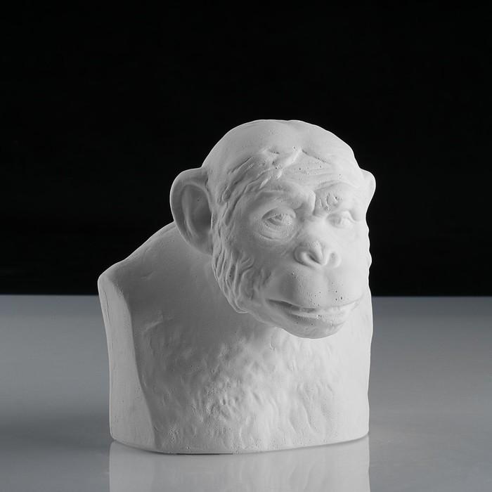 Гипсовая фигура, Бюст шимпанзе «Мастерская Экорше», 14х13х15 см