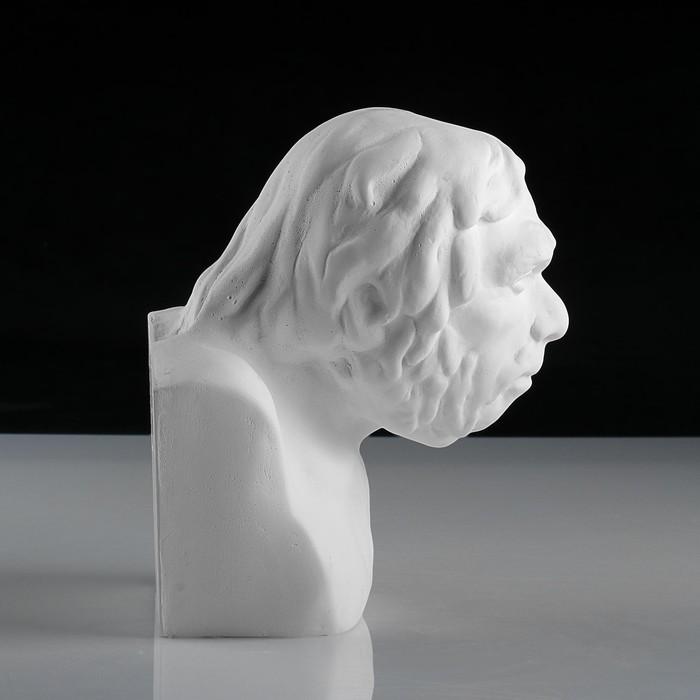 Гипсовая фигура, Бюст неандертальца «Мастерская Экорше», 17х15,5х19,5 см