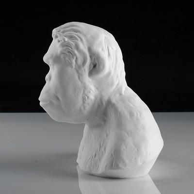 Гипсовая фигура, Бюст австралопитека «Мастерская Экорше», 21х15х19 см