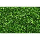 Фотобаннер, 250 × 150 см, с фотопечатью, «Зелёная изгородь»