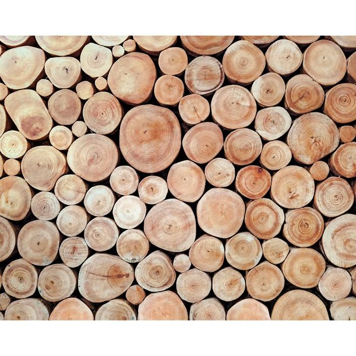 Фотобаннер, 300 × 160 см, с фотопечатью, «Поленница»
