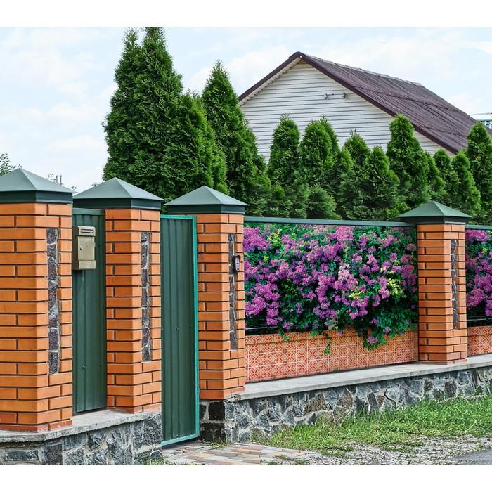 Фотобаннер, 300 × 200 см, с фотопечатью, «Фиолетовые цветы»