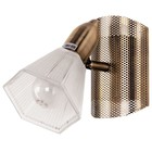 Светильник Darri 1x40Вт E14 бронза 17x12x23см
