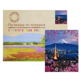 Картина по номерам «Японский пейзаж»