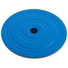Disk health, metal, 2-color, MIX
