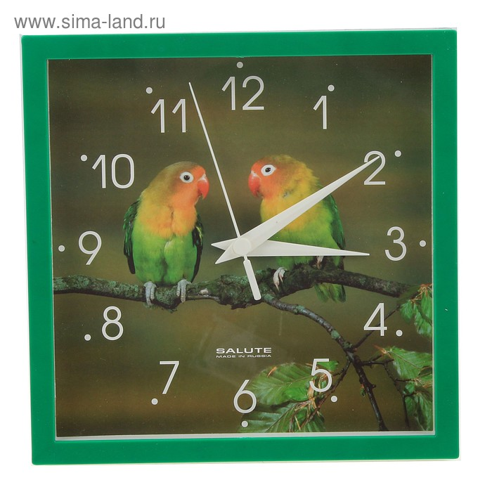 "Часы настенные квадратные ""Два попугая"""