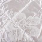 Одеяло Версаль евро 200х220 см, иск. лебяжий пух, трикот, 100% пэ - фото 61614