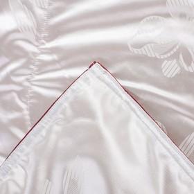 Одеяло Версаль евро 200х220 см, иск. лебяжий пух, трикот, 100% пэ - фото 61615