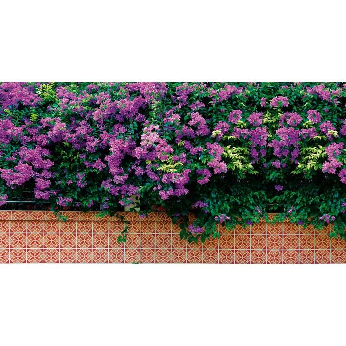 Фотобаннер, 300 × 160 см, с фотопечатью, «Фиолетовые цветы»