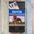 Ящик почтовый «Вертикаль», вертикальный, без замка (с петлёй), узкий, серебристый, фото МИКС