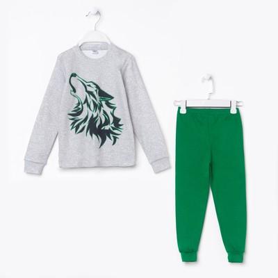 Пижама для мальчика, цвет зеленый, рост 116 см