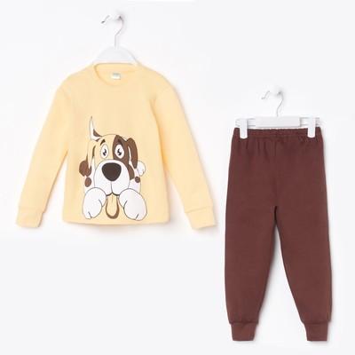 Пижама для мальчика, цвет желтый/коричневый, рост 110 см