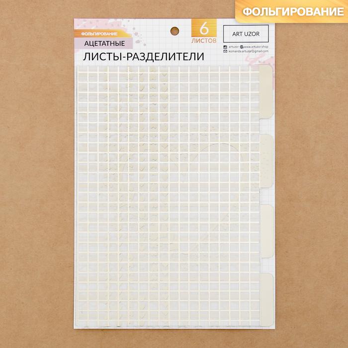 Набор ацетатных разделителей для планера «Эко», 16 × 25 см, 6 листов