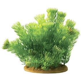 Растение пластиковое PRIME «Хвощ», 15 см